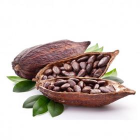 Нерафинированное какао тертое (бобы)