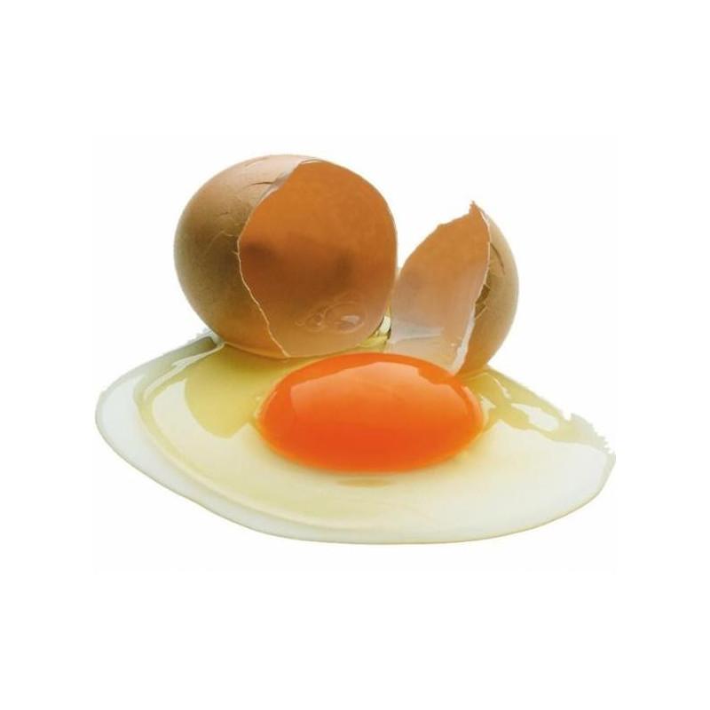 Ліпофолк (олія яєчна)