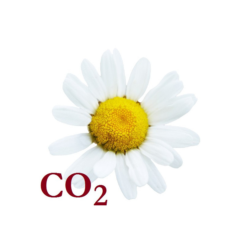 СО2-экстракт ромашки