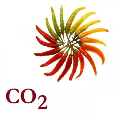 СО2-екстракт паприки