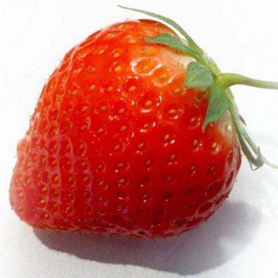 Гідролат полуниці
