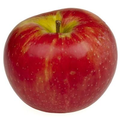 Яблука гідролат