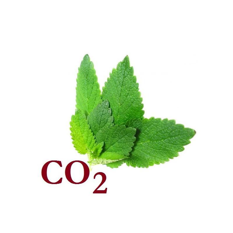 СО2-екстракт меліси