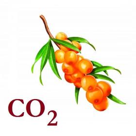 СО2-екстракт обліпихи