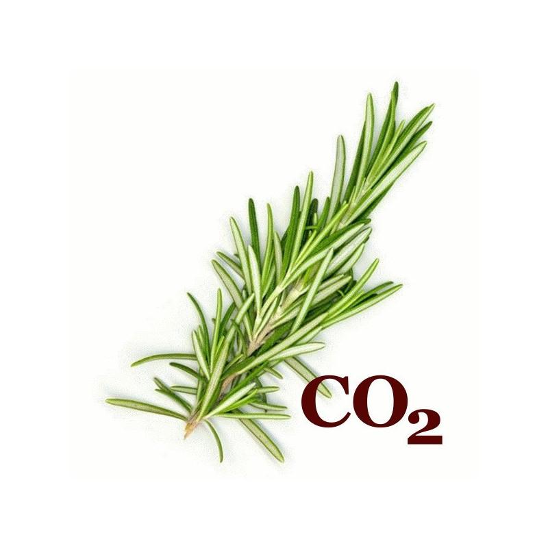 СО2-екстракт розмарину