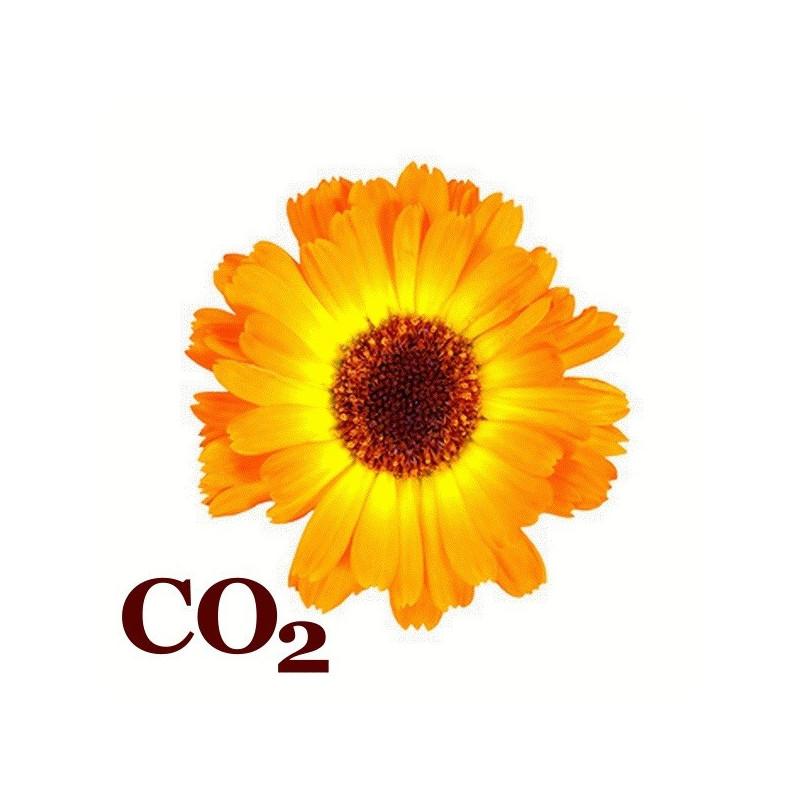 СО2-экстракт календулы