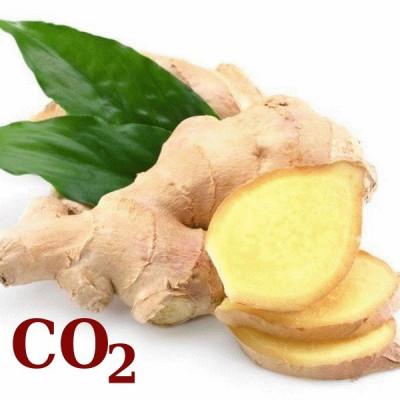 СО2-екстракт імбиру