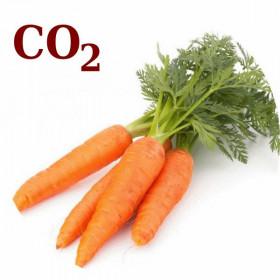 СО2-екстракт моркви