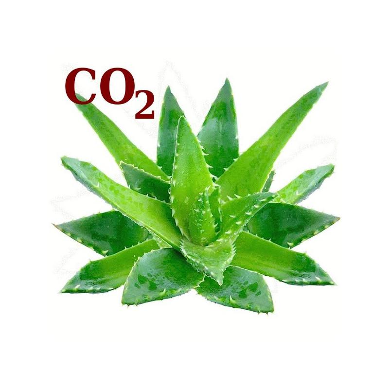 СО2-екстракт алое-віра