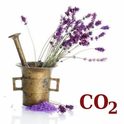 СО2-екстракт лаванди