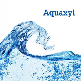 Актив зволожуючий Aquaxyl