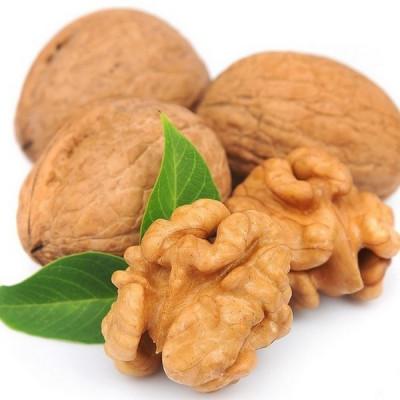 Гидролизат кожуры грецкого ореха