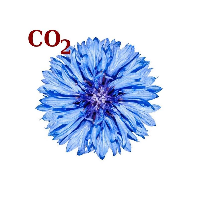 СО2-экстракт василька