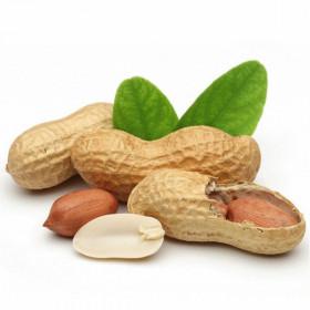 Нерафинированное масло арахиса