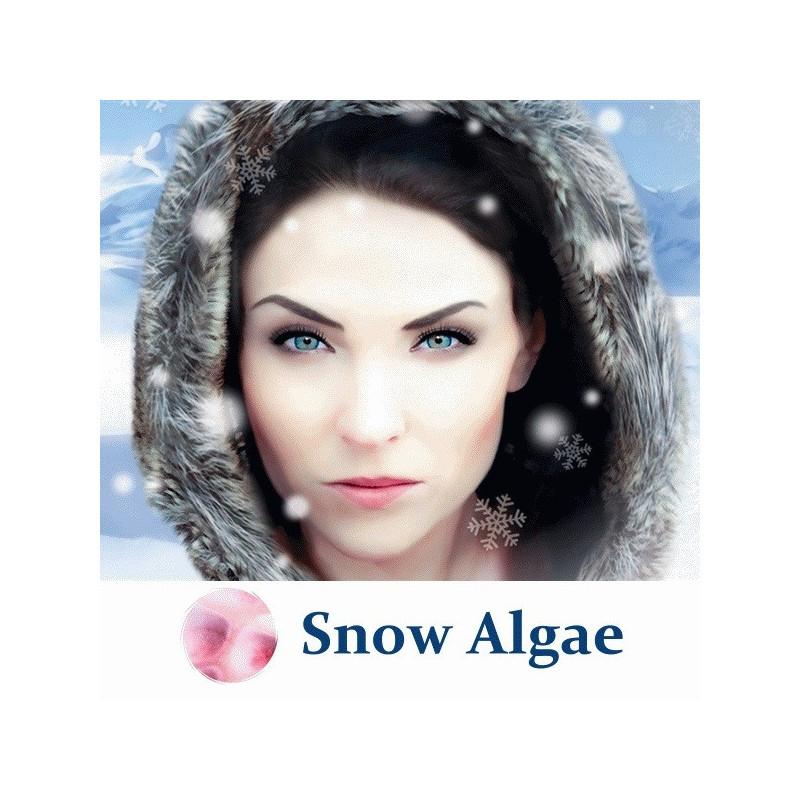 Порошок снежной водоросли Snow Algae