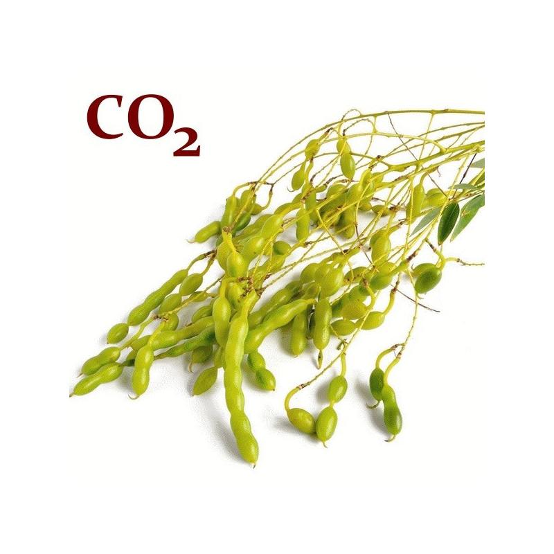 СО2-экстракт софоры