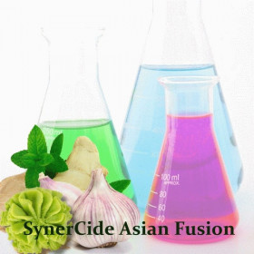 Консервант SynerCide Asian Fusion
