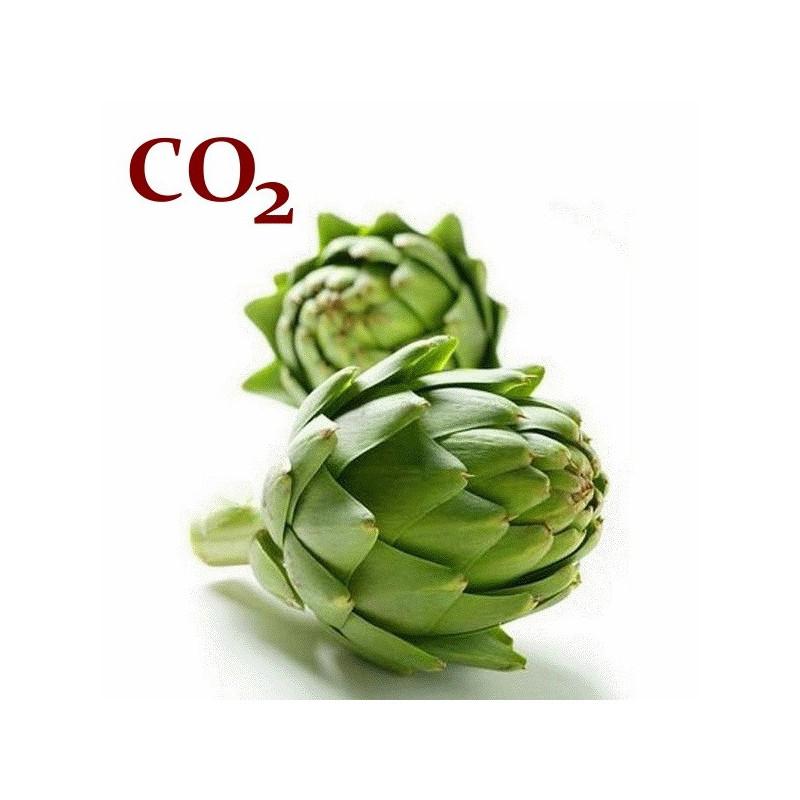 СО2-экстракт артишока