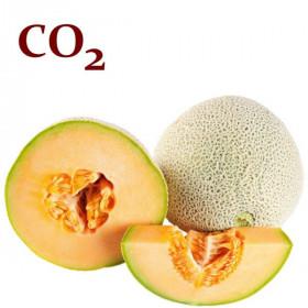 СО2-екстракт насіння дині