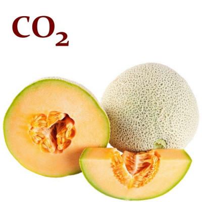СО2-экстракт семечки дыни