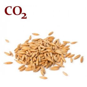 СО2- екстратк вівса