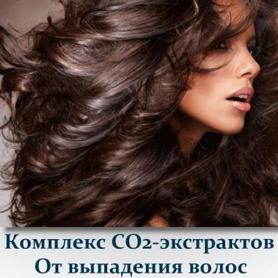 Комплекс СО2-экстрактов От выпадения волос