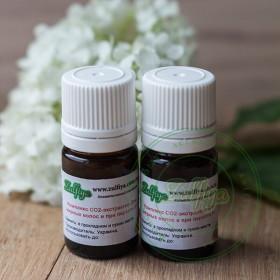 Комплекс СО2-екстрактів Для жирного волосся і при лупі