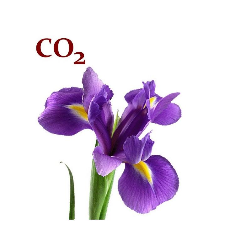 СО2-екстракт ірису