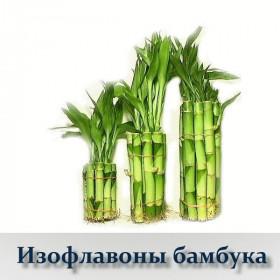 Изофлавоны бамбука