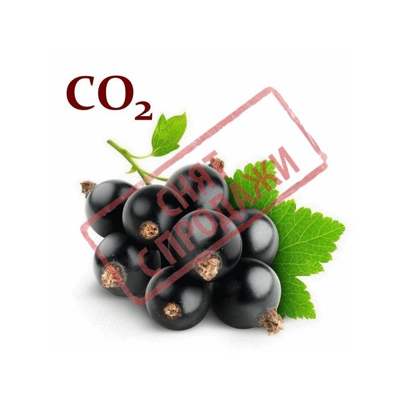 СО2-экстракт смородины