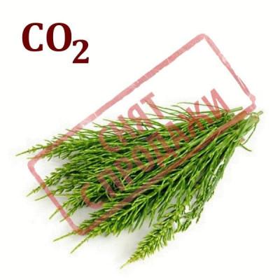 ЗЯТО З ПРОДАЖУ СО2-екстракт хвощу