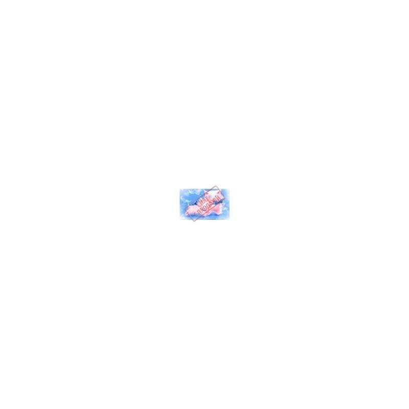 СНЯТО С ПРОДАЖИ Картинка Кошки в розовом 4,5х2,5см