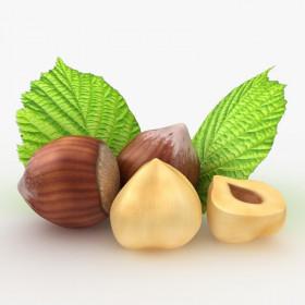 Рафинированное масло лесного ореха