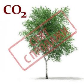 СНЯТ С ПРОДАЖИ CO2-экстракт луба березы