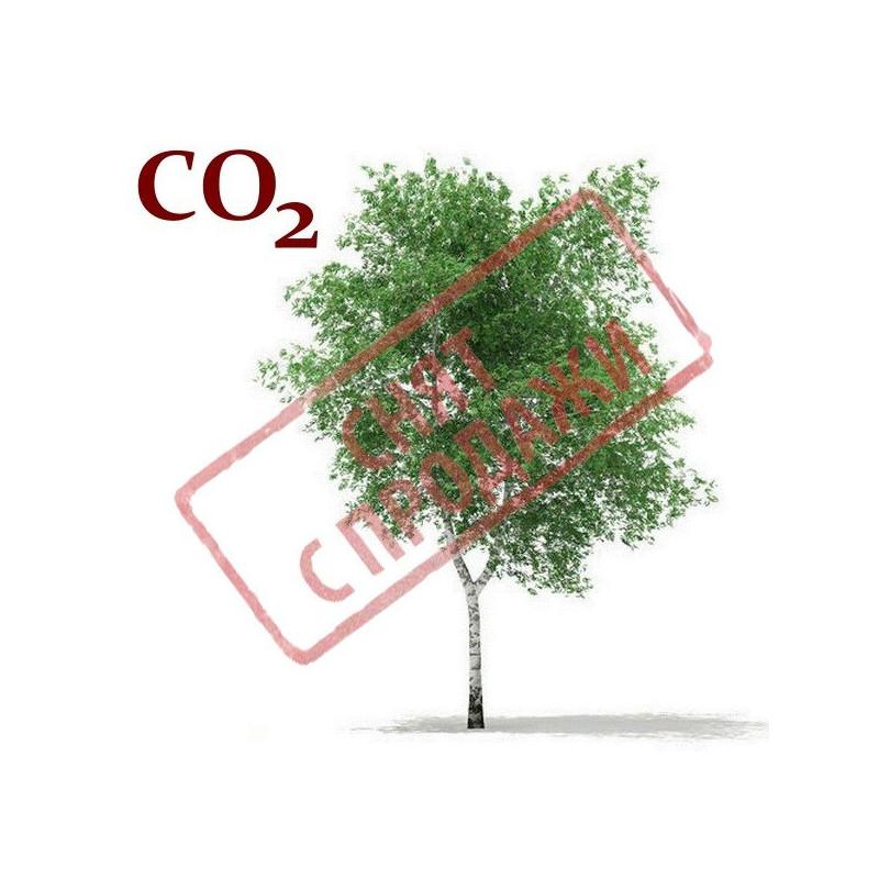 СО2-экстракт луба березы