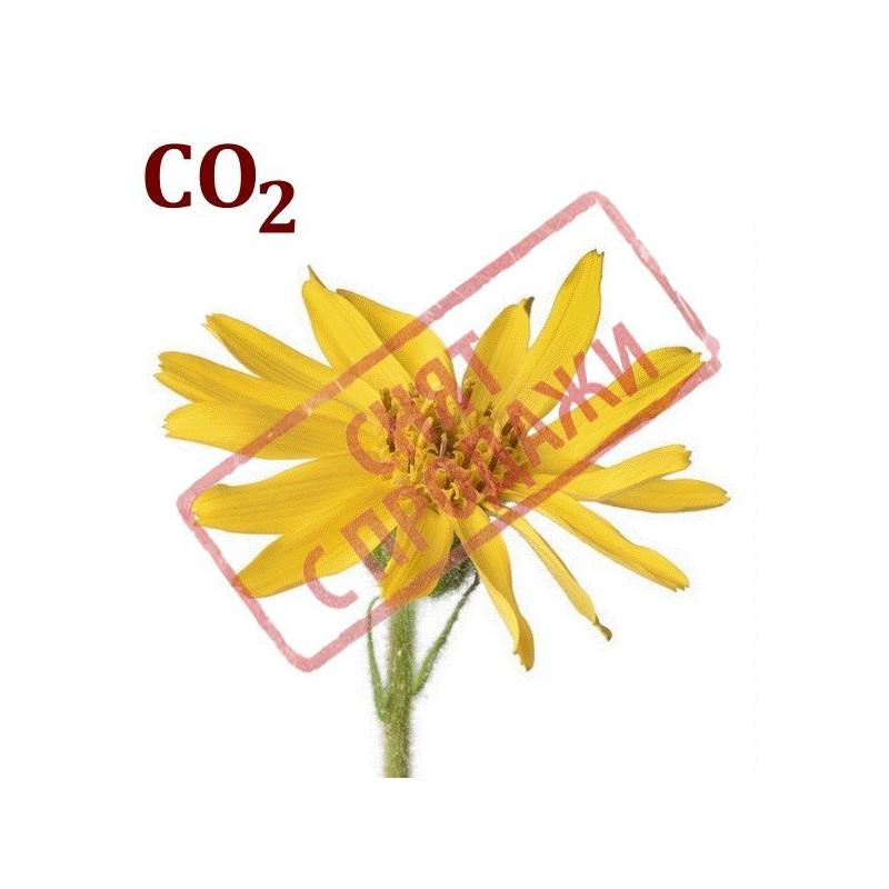 СО2-экстракт арники