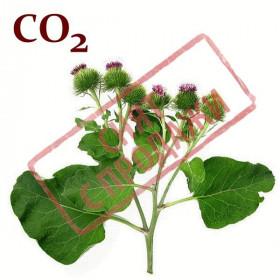 СНЯТ С ПРОДАЖИ СО2-экстракт лопуха корня