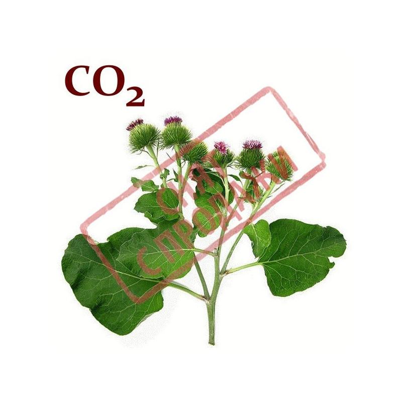 СО2-экстракт лопуха корня