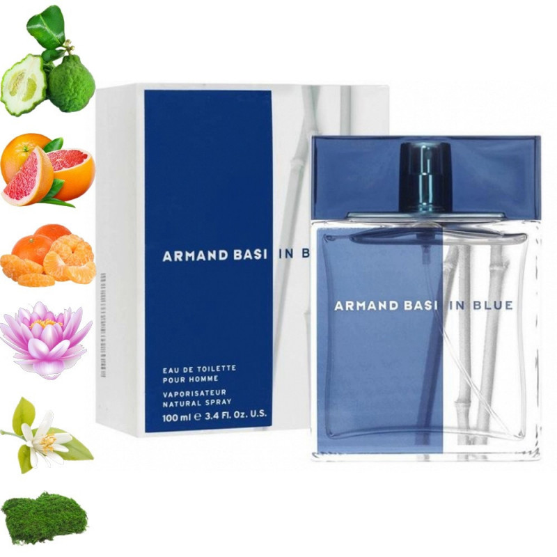 Armand Basi in Blue, Armand Basi парфюмерная композиция