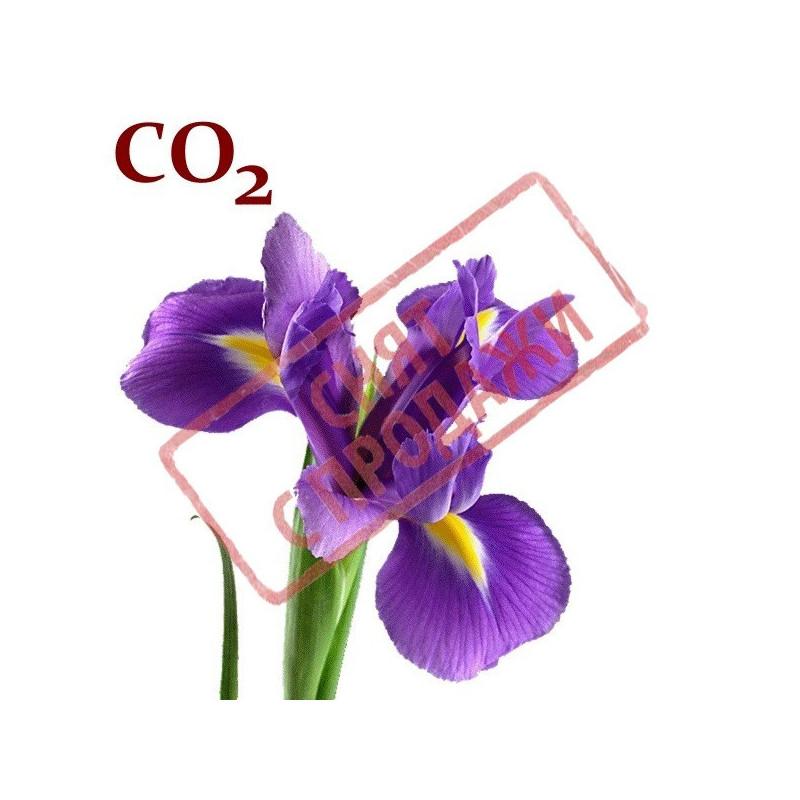 СО2-экстракт ириса