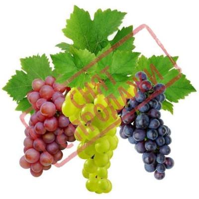 ЗНЯТО З ПРОДАЖУ Виноград мускатель віддушка