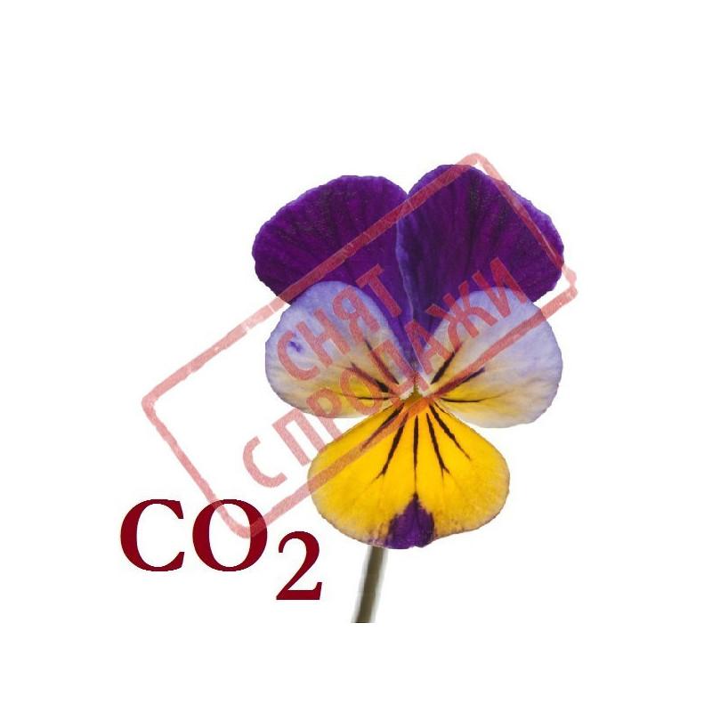 СО2-екстракт фіалки