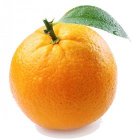 Екстракт апельсина
